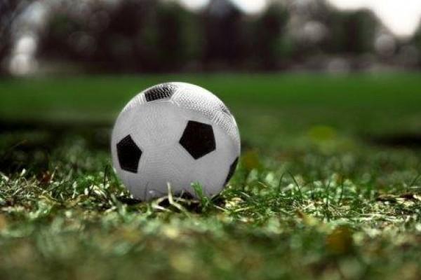 Risques liés à l'utilisation des terrains de sports synthétiques