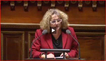 Budget Culture 2018 - F. Laborde rapporteure des crédits Livres et Industries culturelles
