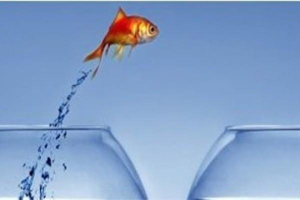Loi relative au transfert des compétences eau et assainisement pour les communautés de communes