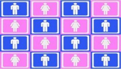 Rapport annuel 2012 de la Délégation aux droits des Femmes